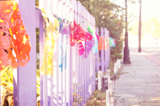 picket fence with colored flag decoration